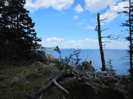 Views of Acadia National Park