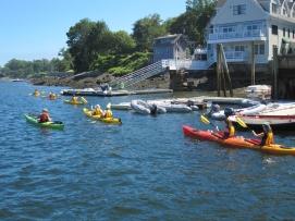 Kayakers in Camden Harbor