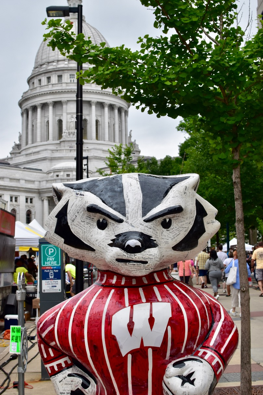 Bucky Badger - 1