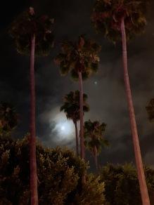 Tiki Oasis 2019 in San Diego - 22