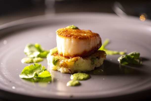 Scallop on plate
